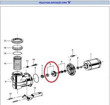 Conjunto rotor 121x5,00 15B para motor de piscina Jacuzzi modelo B