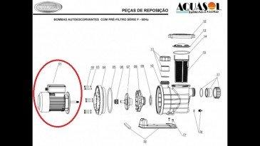 Somente Motor 5F 1/2cv Jacuzzi para Piscinas