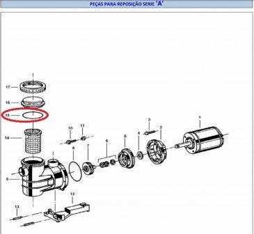 Oring do Pre Filtro do Motor Jacuzzi Linha A