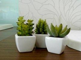 Kit Mini Vasos com 3 unidades - 0,5 x 0,5 x 0,4