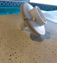 Rotor 1/3 cv da Motobomba Nautilus